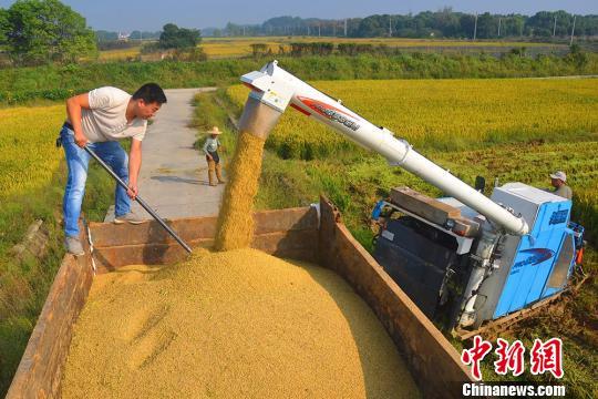 幸运飞艇哪开的:中国31省份全部出台农垦改革发展省级实施意见